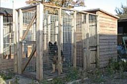Norfolk Kennel